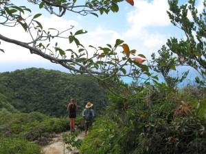 Hiking Providencia