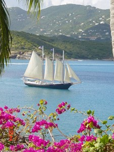 Caribbean Charters